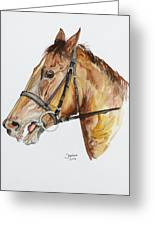 Emir The Horse Greeting Card by Janina  Suuronen