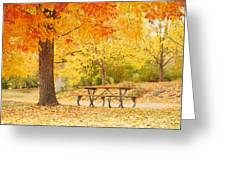 Empty Park On A Fall Day Greeting Card by Yoshiko Wootten