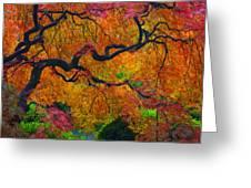 Enchanted Canopy Greeting Card by Patricia Babbitt
