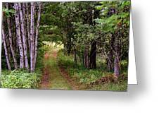 End Of The Road Greeting Card by Tam Graff
