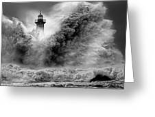 Enduring the Elements BW Greeting Card by Veselin Malinov
