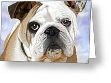 English Bulldog Portrait Greeting Card by Jacqueline Barden