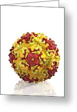 Enterovirus Particle Greeting Card by Science Photo Library