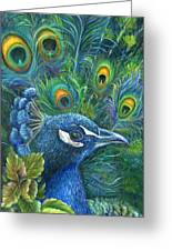Enticing Peacock Greeting Card by Kathy Brecheisen