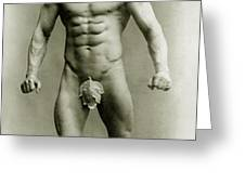Eugen Sandow in classical ancient Greco Roman pose Greeting Card by American Photographer