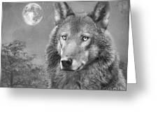 European Wolf Greeting Card by Roy  McPeak
