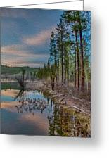 Evening On The Banks Of A Beaver Pond Greeting Card by Omaste Witkowski