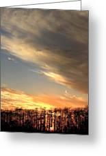 Everglades Clouds Greeting Card by AR Annahita