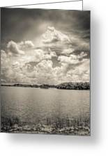 Everglades Lake 6919 Bw Greeting Card by Rudy Umans