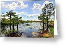 Everglades Landscape 8 Greeting Card by Rudy Umans