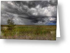 Everglades Storm Greeting Card by Rudy Umans
