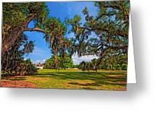 Evergreen Plantation Greeting Card by Steve Harrington