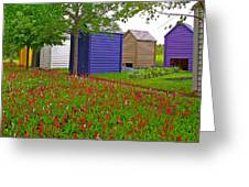 Every Garden Needs A Shed And Lawn In Les Jardins De Metis/reford Gardens-qc Greeting Card by Ruth Hager