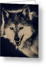 Evil Wolf Greeting Card by Ernie Echols