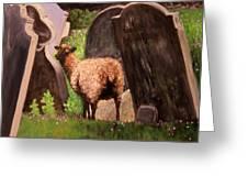 Ewe Spooked? Greeting Card by Janet Greer Sammons