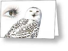 Eye Of Purity And The Mysterious Snowy Owl  Greeting Card by Inspired Nature Photography By Shelley Myke