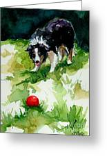 Eye On Tthe Ball Greeting Card by Molly Poole