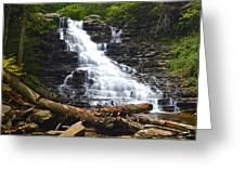 F L Ricketts Greeting Card by Frozen in Time Fine Art Photography