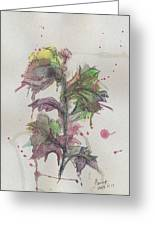 Faded Flower Greeting Card by Aniko Hencz
