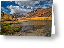 Fall At North Lake Greeting Card by Cat Connor