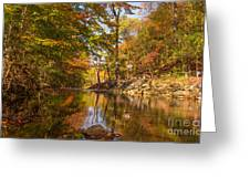 Fall at Valley Creek  Greeting Card by Rima Biswas