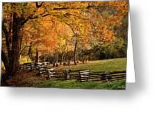 Fall Colors Greeting Card by John Pagliuca