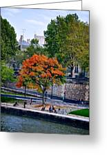 Fall Colors On The Seine Greeting Card by Matt MacMillan