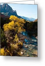 Fall Colors Virgin River Zion National Park Utah Greeting Card by Robert Ford