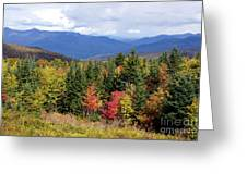 Fall Foliage Greeting Card by Kerri Mortenson