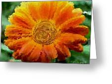Fall For Me Greeting Card by Holley Jacobs