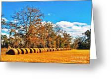 Fall Hayfield Greeting Card by M Glisson