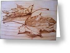 Fall In Greeting Card by Cynthia Adams