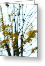 Fall In Motion Greeting Card by Karol  Livote