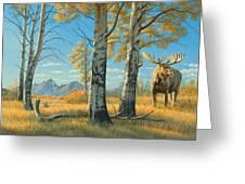 Fall Landscape - Moose Greeting Card by Paul Krapf