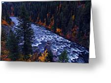Fall Lined River Greeting Card by Raymond Salani III