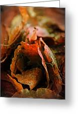 Fall Greeting Card by Odd Jeppesen