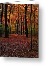 Fall Path Greeting Card by Raymond Salani III
