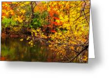 Fall Reflection Greeting Card by Robert Mitchell