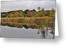 Fall Reflections 2 Greeting Card by Todd and candice Dailey