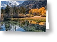 Fall Reflections Greeting Card by Cat Connor