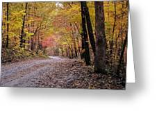 Fall Road Greeting Card by Marty Koch