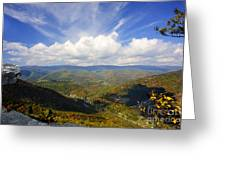 Fall Scene From North Fork Mountain Greeting Card by Dan Friend