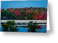 Fall Splendor Greeting Card by Gene Sherrill