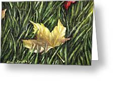 Fallen From Grace Greeting Card by Shana Rowe