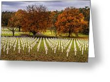Fallen Soldiers Greeting Card by Ryan Wyckoff