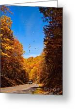 Falling Fall Leaves - Blue Ridge Parkway Greeting Card by Dan Carmichael