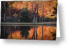 Fall's Natural Fire Greeting Card by Lynn Bauer