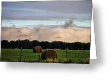 Farm Field Drama Greeting Card by Dan Sproul