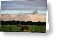 Farm Field Drama Greeting Card by Dan Sproul
