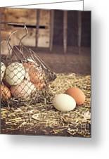 Farm Fresh Eggs Greeting Card by Edward Fielding
